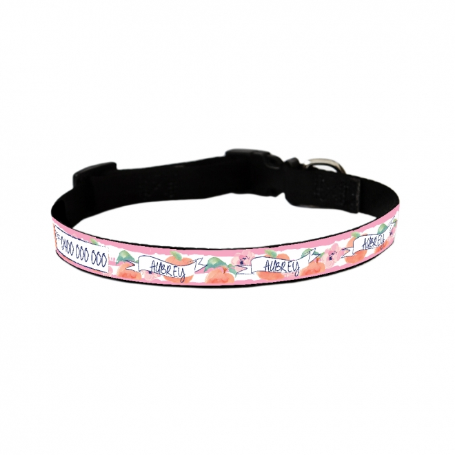 Dog Collar - Just Peachy